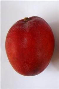 frutta esotuca mango tommy