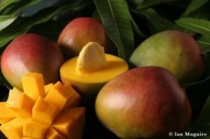 frutta esotica mango